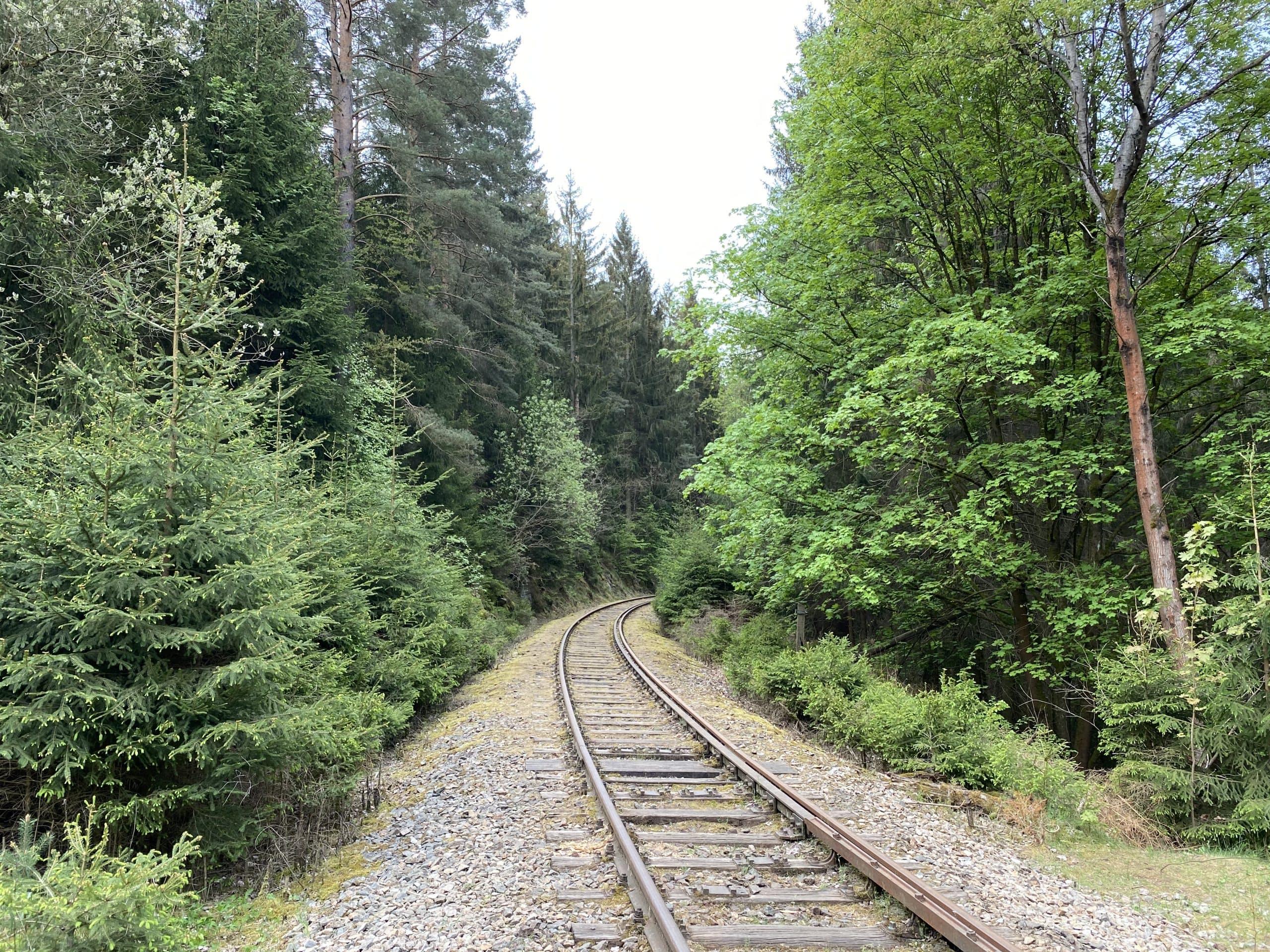 ©Foto: Jan Krehl | railmen | Gleise im Wald von Ziemestal