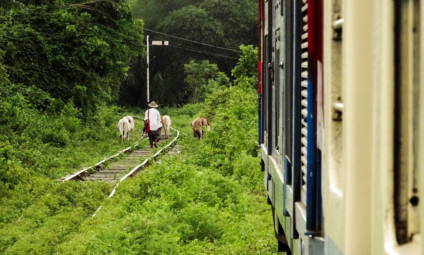 ©Foto: Marius Franke | railmen | Thailand