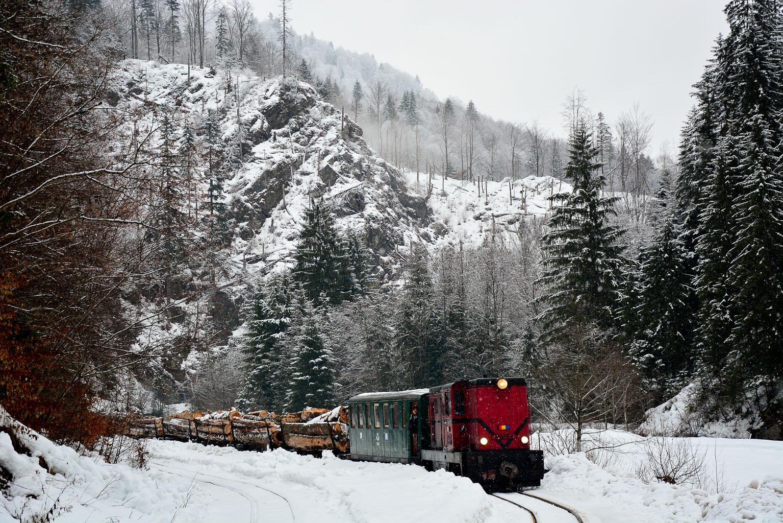 ©Foto: Steffen Mann | railmen | Waldbahn Viseu du Sus in Rumänien